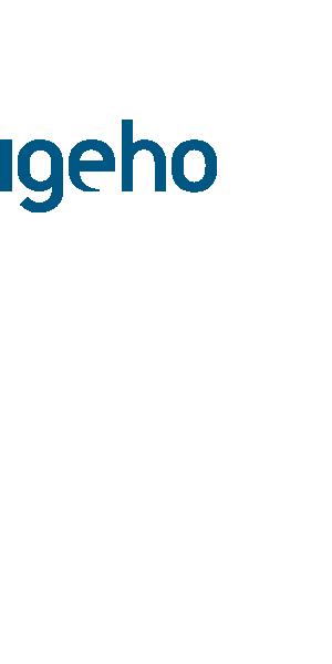 MCH Group | Igeho | Logo.